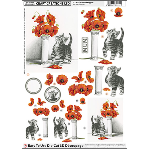 DCD622 Cat With Poppies